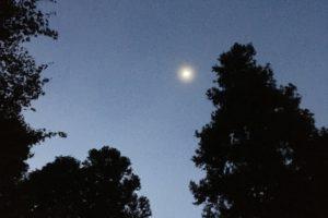鳴滝森林公園の夜